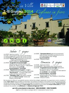 Artigiani in Villa 2014_cartolina