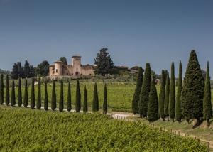 Adsi_Castello di Gabbiano_veduta