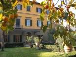 fi.Giardino di Palazzo Rospigliosi Pallavicinicachi due alberi