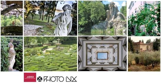 collage-photolux