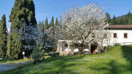 ADSI. Lunigiana. Convento del Carmine